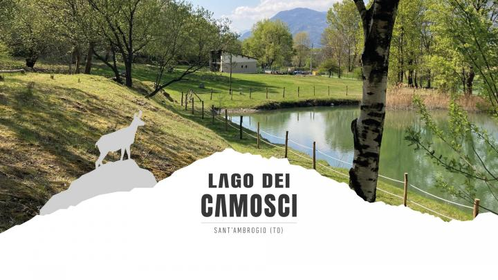 CAMOSCI SOUND 2021